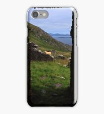 View From A Lighthouse Ruin  iPhone Case/Skin