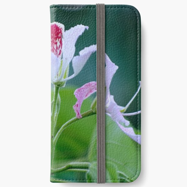 Bauhinia Monandra (Pink Orchid Tree) Flower Cluster iPhone Wallet