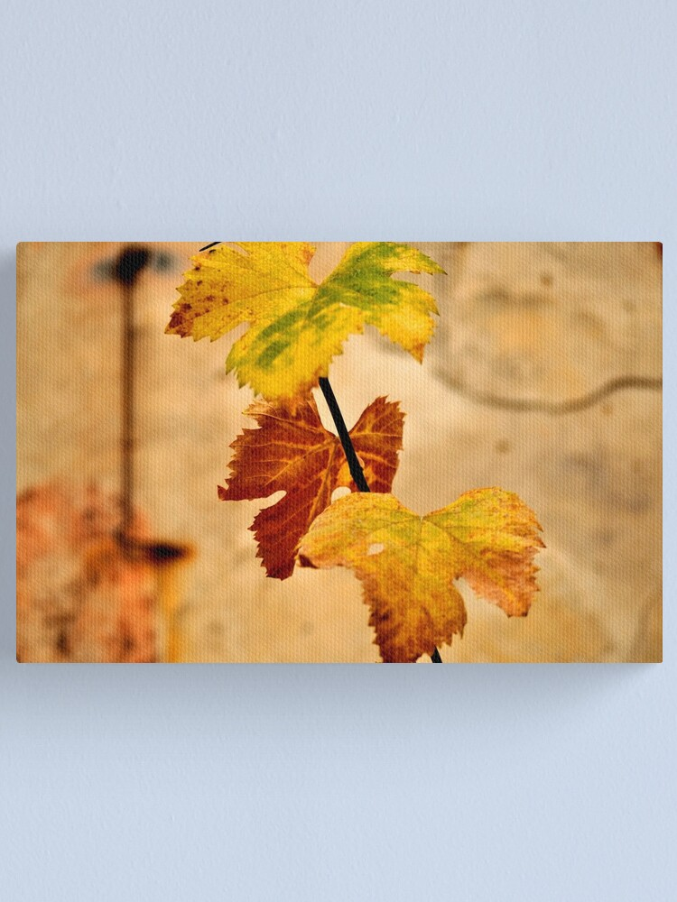 Alternate view of Autumnal Canvas Print