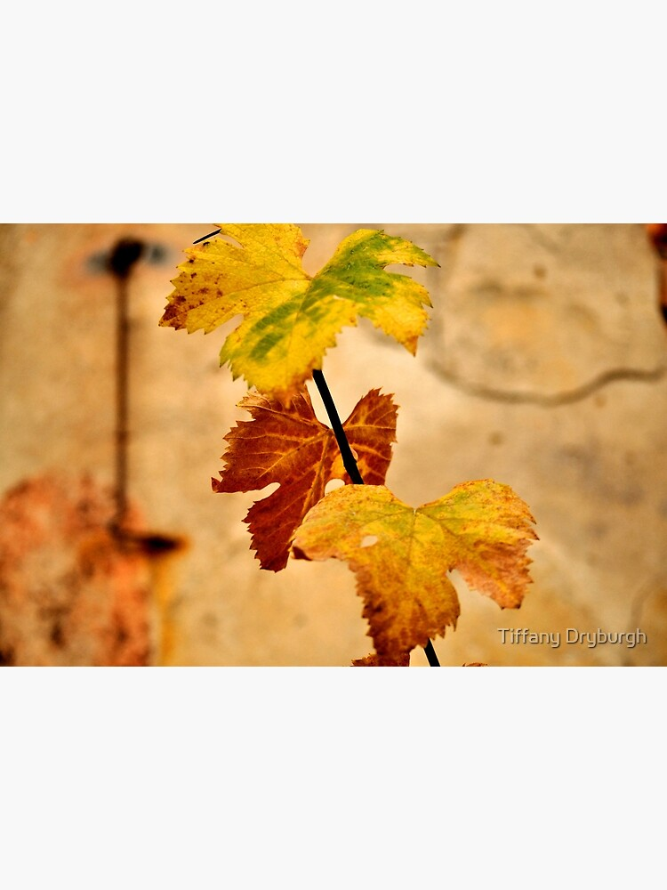 Autumnal by Tiffany