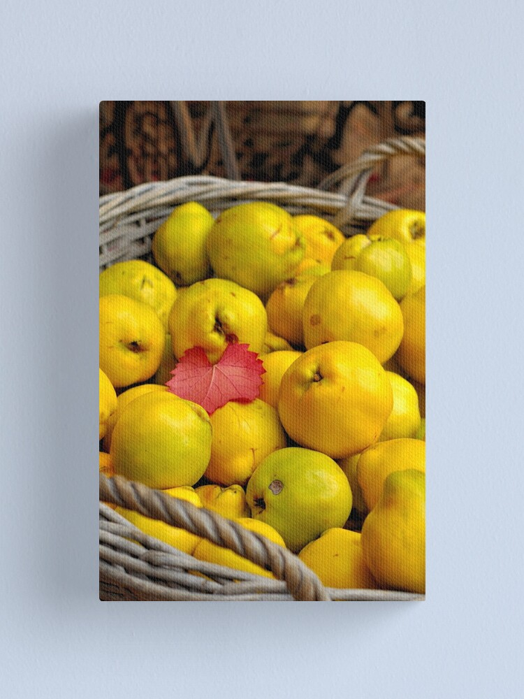 Alternate view of Basketful of Autumn Canvas Print