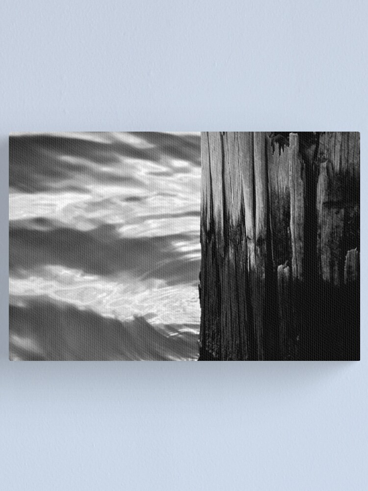 Alternate view of Wood & Water Canvas Print
