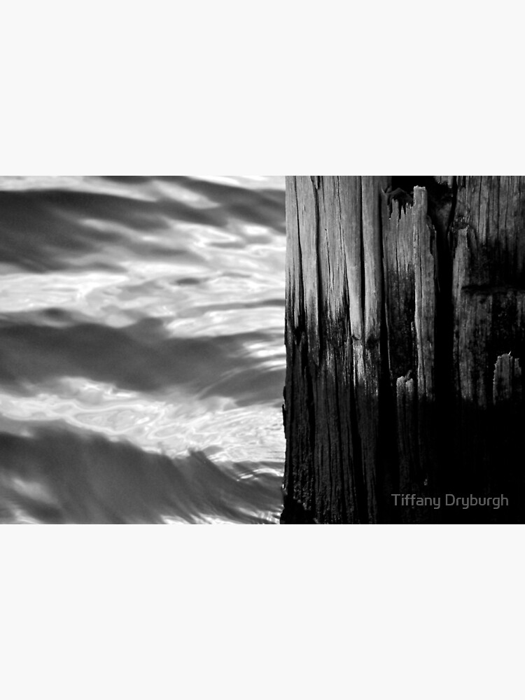Wood & Water by Tiffany