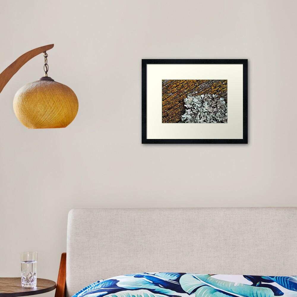 Taking Over Framed Art Print