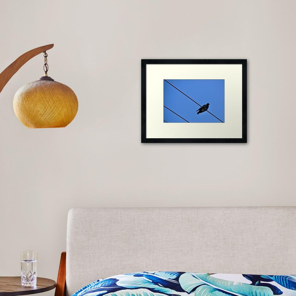 A Nice Spot for Sunbathing Framed Art Print