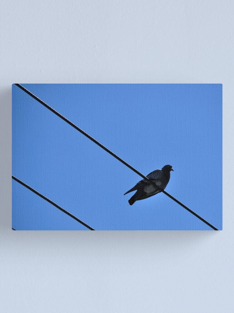 Alternate view of A Nice Spot for Sunbathing Canvas Print