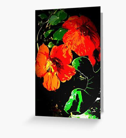 Red Nasturtiums Greeting Card