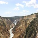 Grand Canyon of Yellowstone by Michelle Callahan