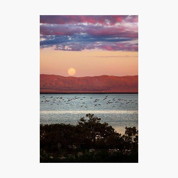 Sunset Odyessy Photographic Print