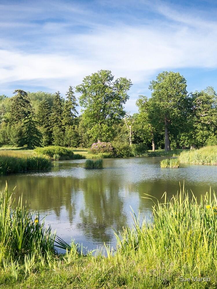 Rural Lake by SMartin