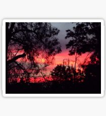 Sunset behind desolate trees 2 Sticker
