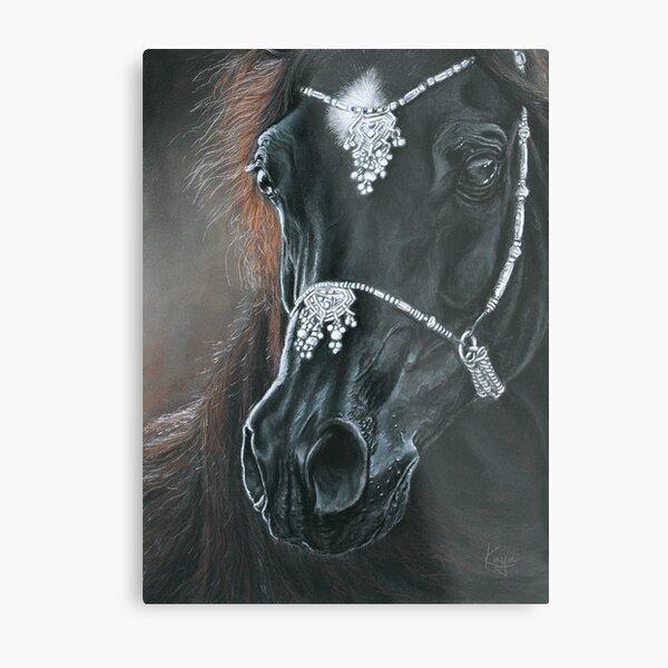 """""""Black Horse"""" Pastel portrait Metal Print"""