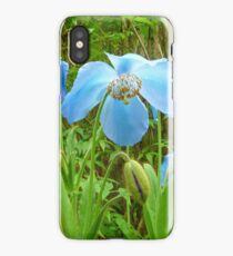 Himalayan Poppy iPhone Case/Skin