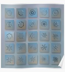 Snowflake collage - Season 2013 bright crystals Poster