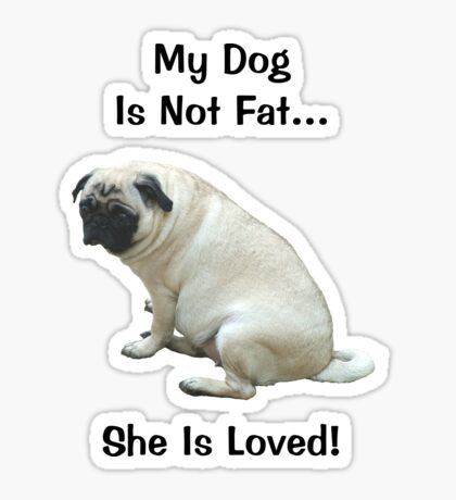 My Dog is Not Fat! She is Loved Sticker