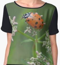 I am tiny tiny Women's Chiffon Top