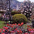 Memorial Rose Garden, Princess Grace, Monaco. by johnrf