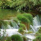 Croatia's green by loiteke