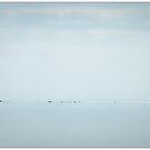 Horizon by Alan Robert Cooke