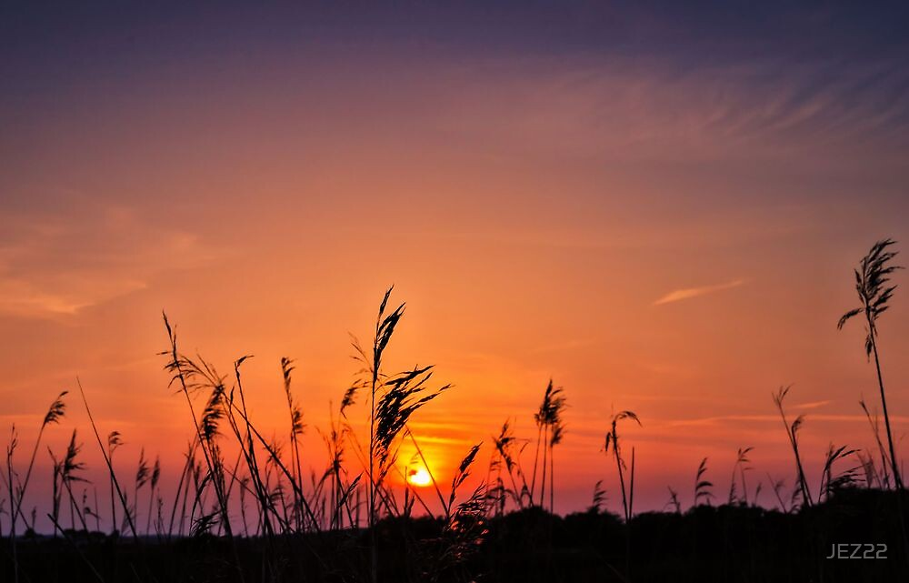 Marsh Sunset by JEZ22