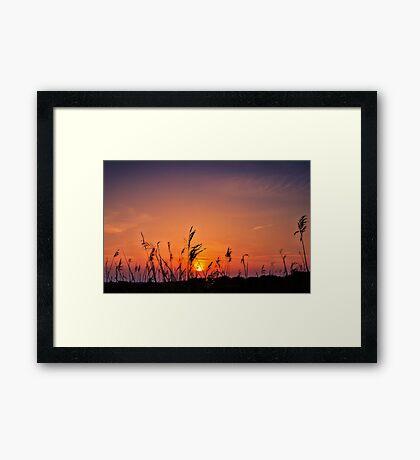 Marsh Sunset Framed Print