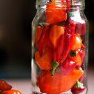 Chili Jar (2) by Hege Nolan