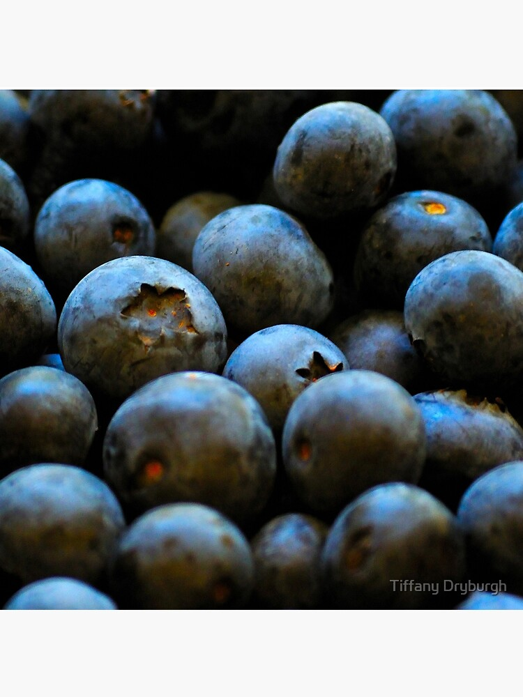 Blueberries by Tiffany