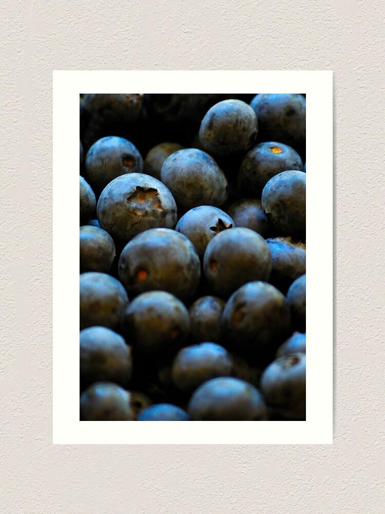 Alternate view of Blueberries Art Print