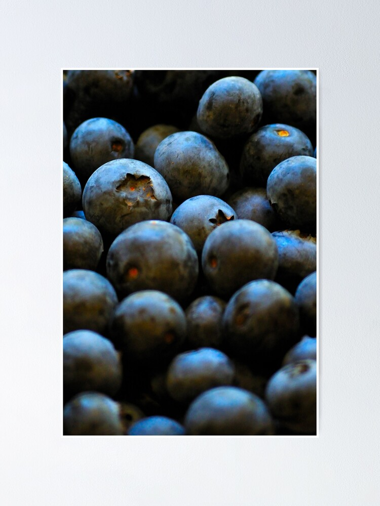 Alternate view of Blueberries Poster