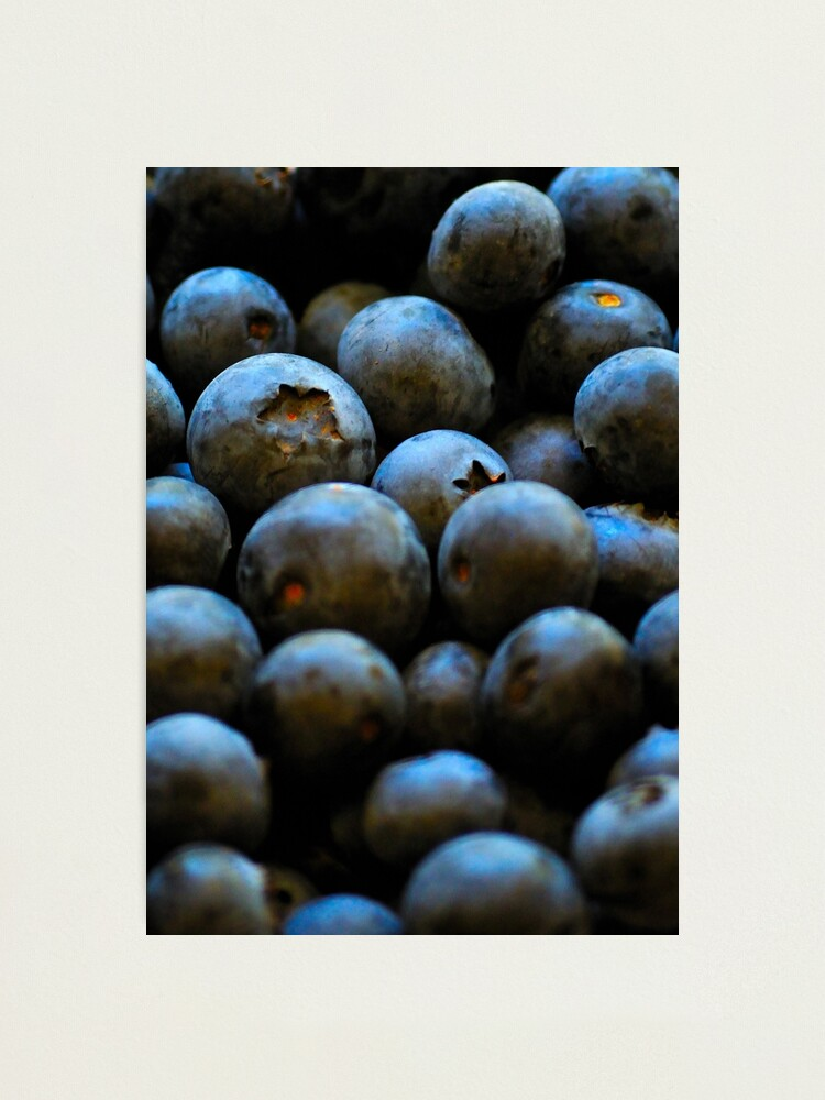 Alternate view of Blueberries Photographic Print