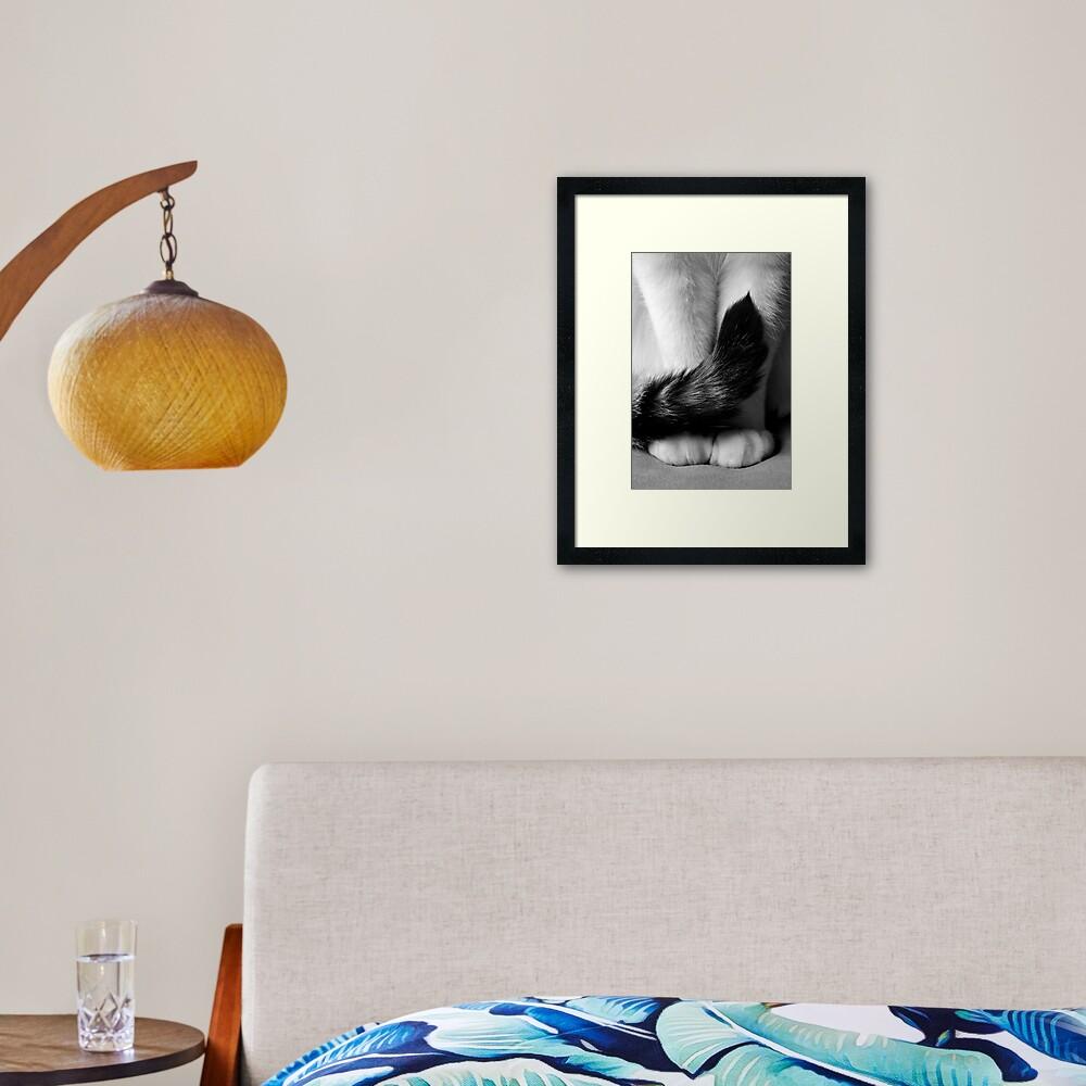 Sitting Pretty Framed Art Print