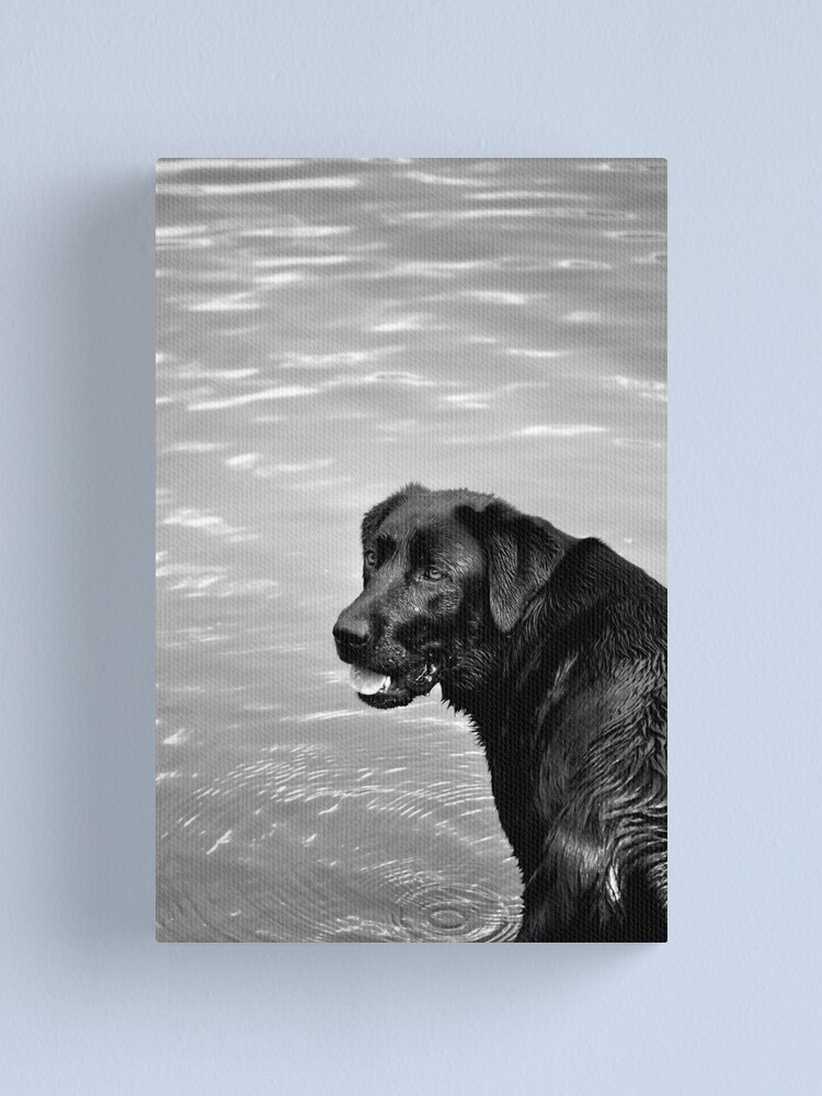 Alternate view of throw the stick, throw the stick...! Canvas Print