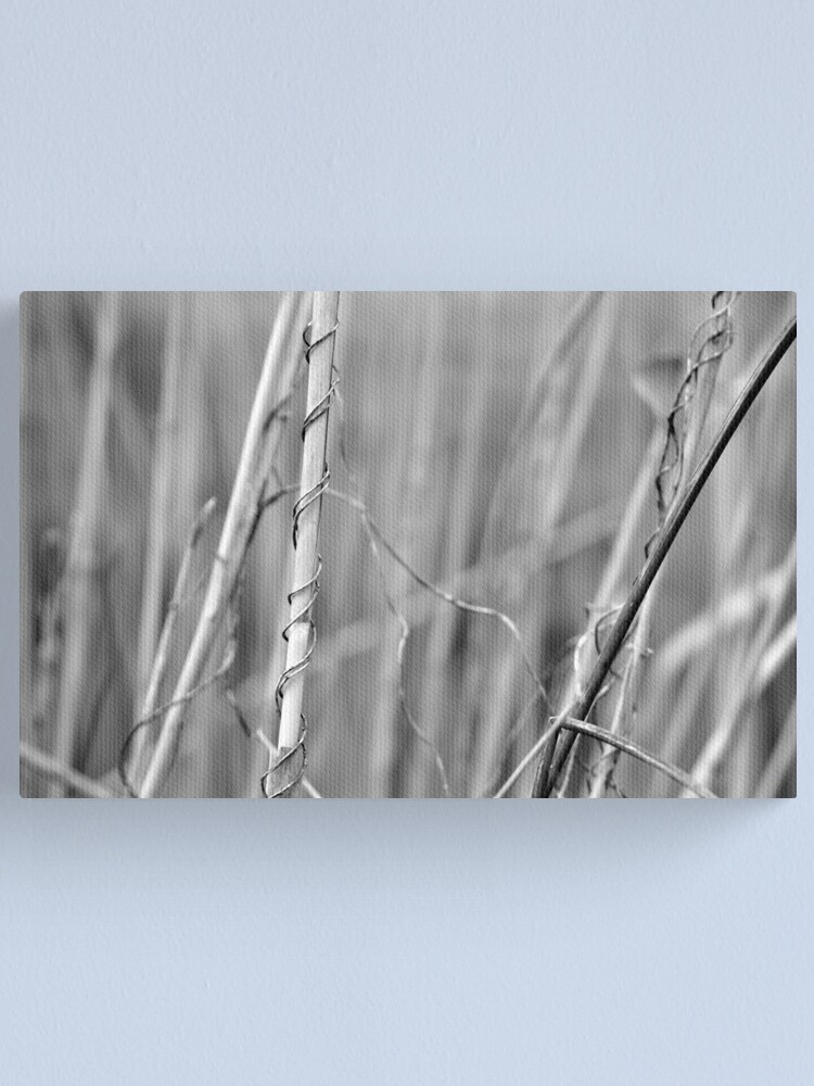 Alternate view of Supportive Canvas Print