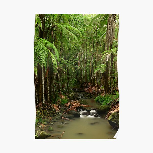 A creek runs through it Poster