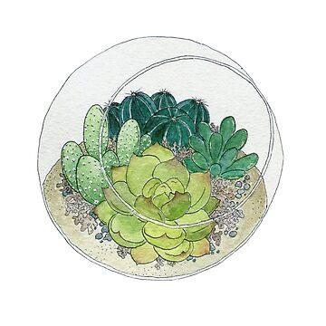 Succulent Bowl by JenniferCharlee