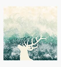 Oh Deer Green Photographic Print