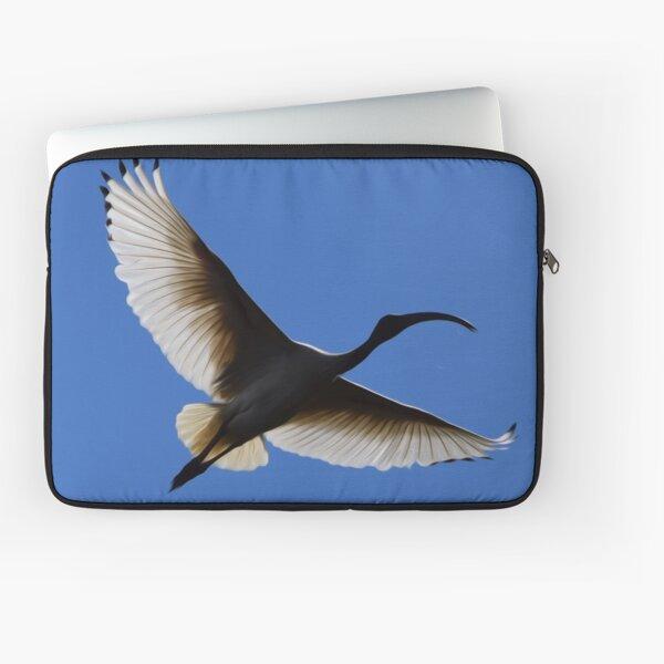White Ibis 2 Laptop Sleeve