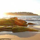 Bondi Sunrise by kelliejane