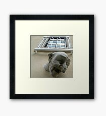 Silly Head Framed Print