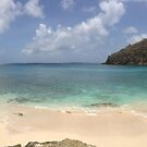 L'anse Guyac Beach by IslandImages