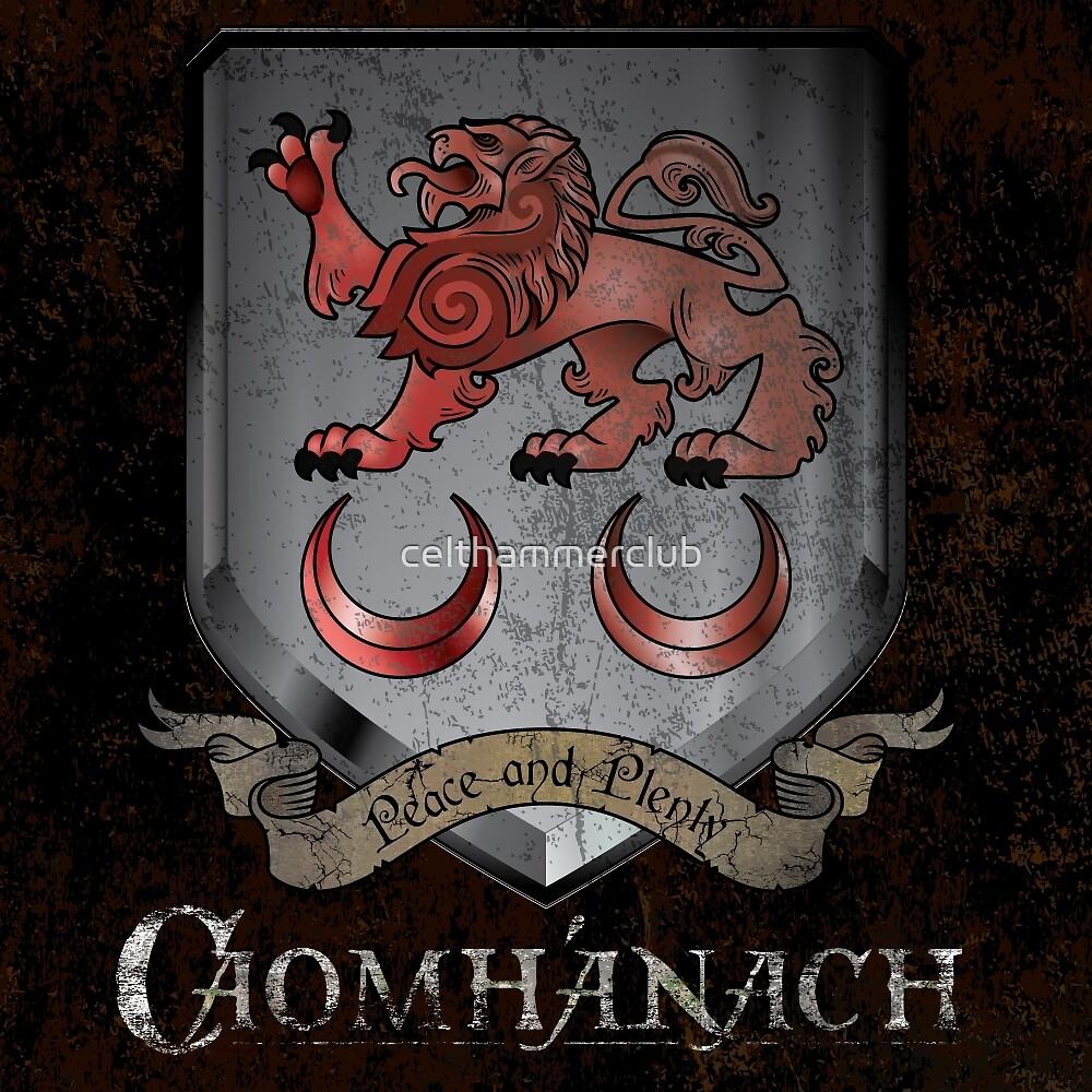 Caomhánach Shiny Shield by celthammerclub