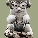 CAT RIDING TORTOISE by MEDIACORPSE
