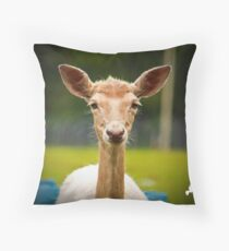 Eyebrows and Wiskers Throw Pillow