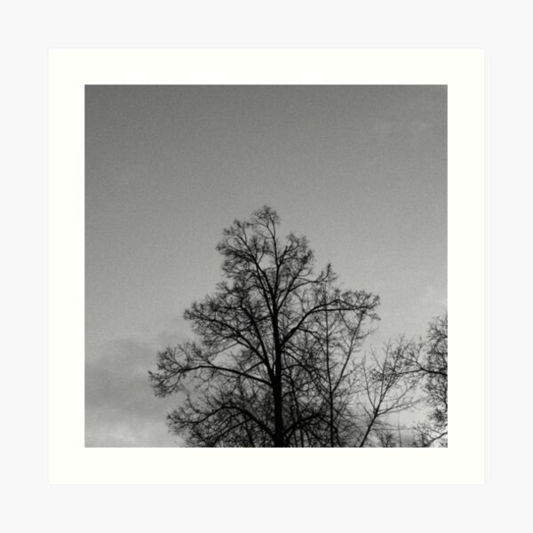 Tree in front of the sky  Art Print