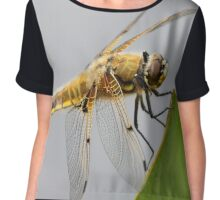 Four-spotted Chaser Dragonfly Chiffon Top