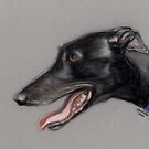Black Greyhound Profile by Charlotte Yealey
