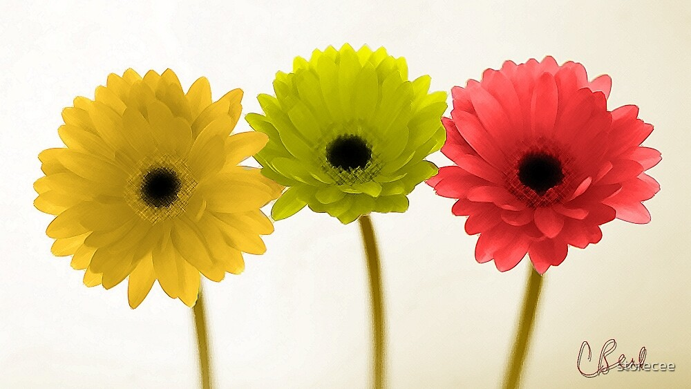 Autumn Colored Flowers by storecee