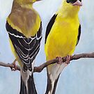 Mr & Mrs Goldfinch by Charlotte Yealey