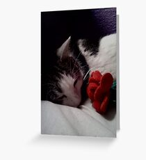 Snuggle Muffin With a Rose Greeting Card
