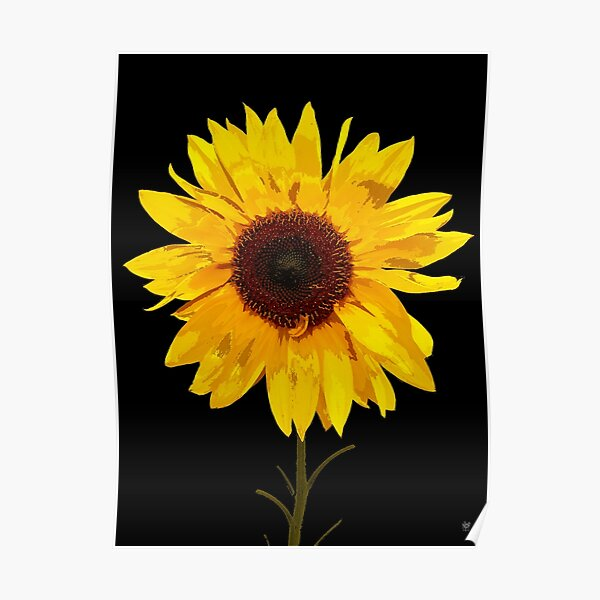 SUNFLOWER PRINT Poster